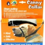 Canny Collar Reviews to Stop Dogs Pulling