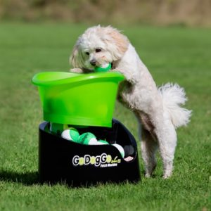 Go Dog Go Fetch Machine