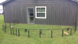 cageplaypen Puppy Playpen