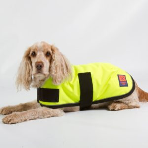 hi vis waterproof dog coats best available
