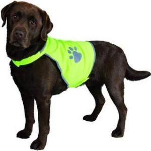 hiu vis waterproof dog coats