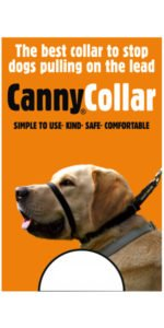 Canny Collar Reviews - How To Stop Your Dog Pulling 1