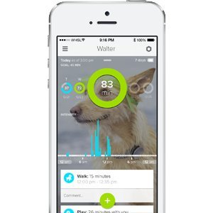 Best GPS Tracker for Dogs 2019 - Find Your Dog ANYWHERE 12
