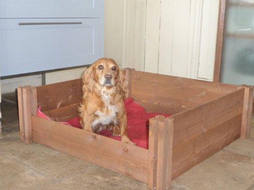 woodenwhelp