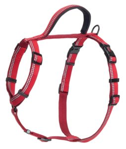 Best Halti Harness Stop Pulling Training Harness Review 2019 3