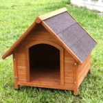 Top 5 Best Outdoor Dog House Reviews - Dog Houses for Your Garden 2
