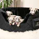 Best Large Orthopedic Dog Beds: 13 Reasons To Own One
