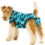 Best Dog Anxiety Vests: Reduce Noise and Separation Anxiety