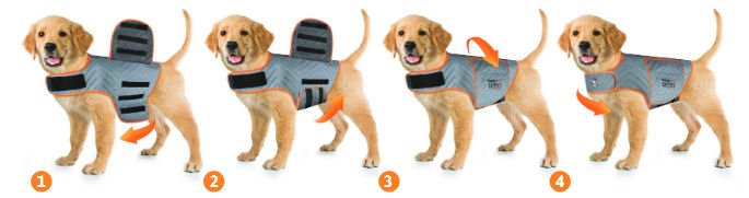 Thundershirt Fitting INstructions Thundershirt Dog Anxiety Vests