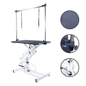 Best Portable and Professional Grooming Table Thats Perfect For Your Dog 2019 20