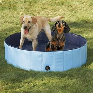 Best Dog Grooming Baths – Dog Bath Tubs For Your Home 2019 3