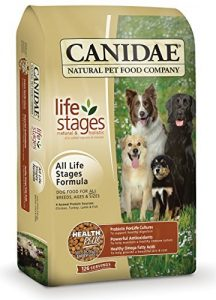 5 of the Best Senior Dog Food for a Healthier Looking Dog