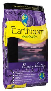 Best Dry Dog Food for Puppies - 5 Perfect Foods to Choose From