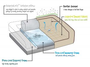 BUDDY REST MEMORY FOAM DOG BED INFORMATION