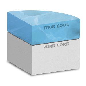 Buddyrest Memory Foam Dog Bed - Best Memory Foam Dog Bed 2020