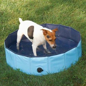 best collapsible dog paddling pools