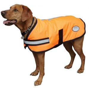 weatherbeeta waterproof dog coat with chest and belly protection