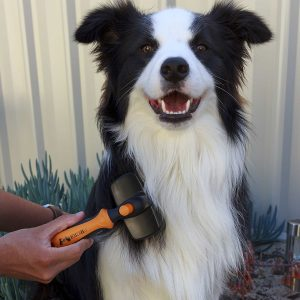 Best Dog Dematting Comb and Tools for Matted Dog Hair 6