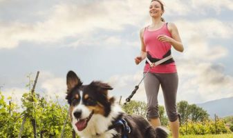 Best Hands Free Dog Leash / Lead:  Help Your Dog Keep Up on Your Run! 8