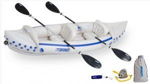 Sea Eagle SE300 Best Kayak Dog attachments