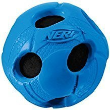 Dog Nerf Toys for Outdoors:  Fun for You and Your Furry Friends 3