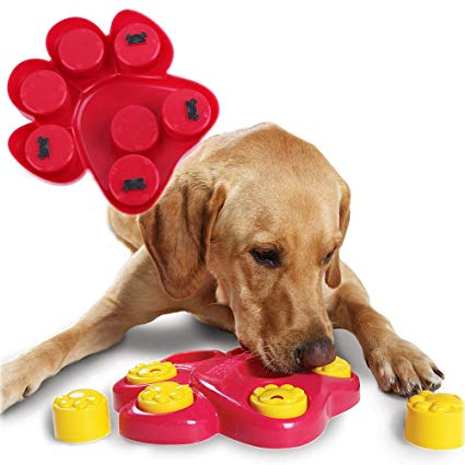 How to Keep Your Dogs Brain Active:  Mental Brain Stimulation For Dogs