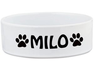 Top 5 Amazing Dog Bowls Feeders and Waterers 1