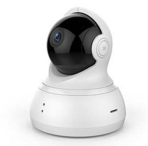 Monitor Your Pet with the 5 Best Pet Surveillance Cameras