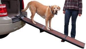Pet Gear Foldable Dog Ramp