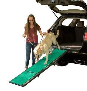 PetGear Tri Fold Dog Ramp