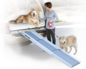 Comprehensive Guide to the 10 Best Telescopic Dog Ramps