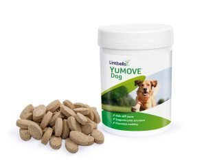 9 Amazing Lintbells Dog Supplements for an Improved Life 2
