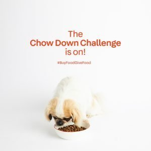Paws.com Launches the Chow Down Challenge to Feed  250,000 Shelter Dogs 2