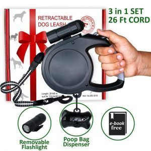 10 Amazing Retractable Dog Leads: More Length More Freedom