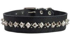 pitbull dog collars