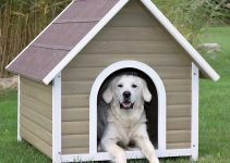 Top 5 Best Outdoor Dog House Reviews - Dog Houses for Your Garden 3