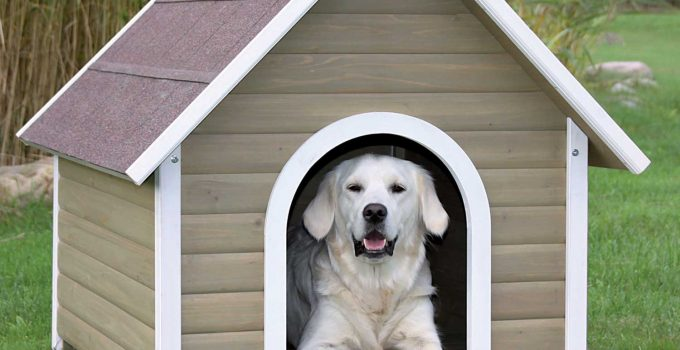 Top 5 Best Outdoor Dog House Reviews - Dog Houses for Your Garden 1