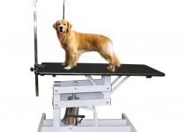 Best Portable and Professional Grooming Table Thats Perfect For Your Dog 4