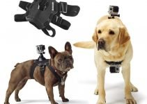Best GoPro Dog Chest Harness and Accessories 11