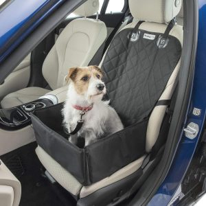 How Can I Solve Dog Anxiety In The Car? These Tips Might Help...