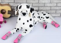 Best Dog Boots for Winter 5 Boots to Keep Your Doggie Paws Warm and Protected 5