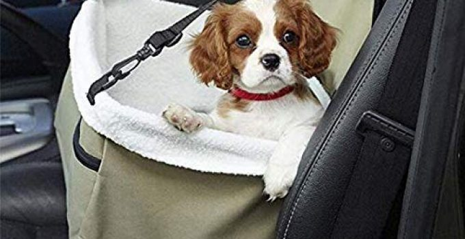 How Can I Solve Dog Anxiety In The Car? These Tips Might Help... 10