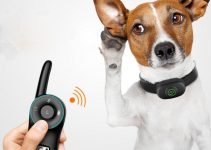 11 Remote Control Vibrating Dog Collar for the Ultimate Training 4