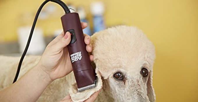 WOW! The Best Professional Dog Clippers 2020 - Groom Your Dog Like a Pro!