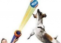 Dog Nerf Toys for Outdoors: Fun for You and Your Furry Friends 15