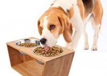 5 Amazing Elevated Dog bowls for the Larger Dogs