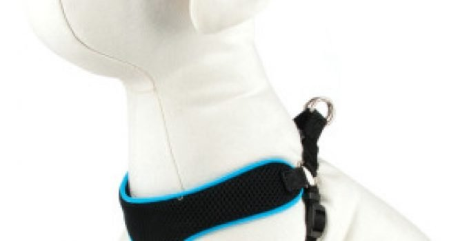 Guide to Fitting Dog Harnesses Correctly 7