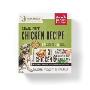 Choose the Best Branded Organic Dog Treats for your Doggie 1