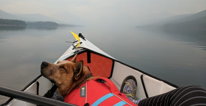 7 Best Kayak for Dogs: Alone Time On The Water
