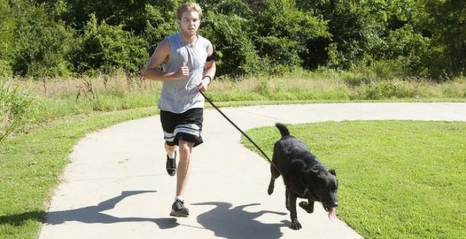 Best 100% Hands Free Dog Leash Help Your Dog Keep Up on Your Run!